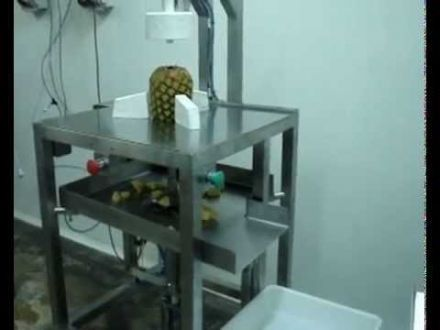 Pelamatic Pineapple Peel - PAP - 001